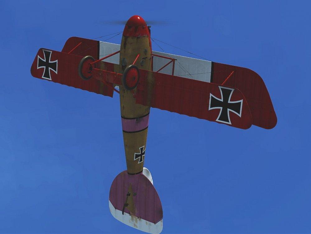 DV Klai pink wing3.jpg