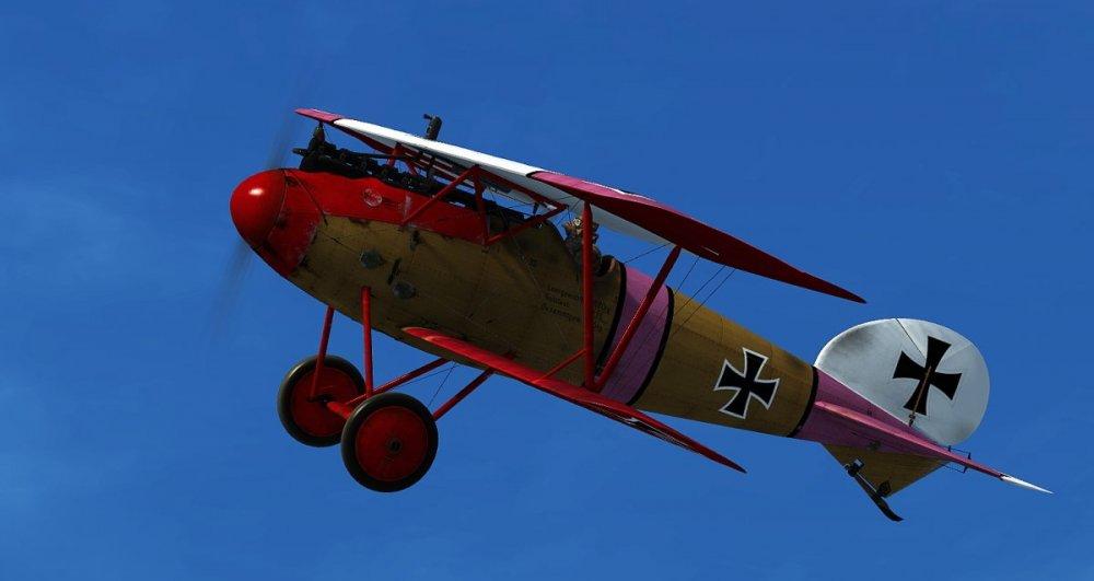 DV Klai pink wing2.jpg