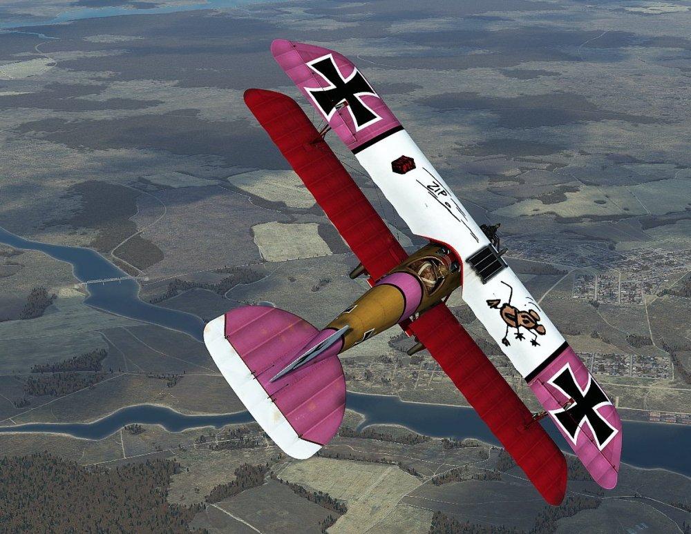 DV Klai pink wing.jpg